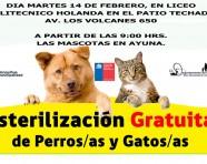 Hoy esterilización a perros y gatos gratuita!!